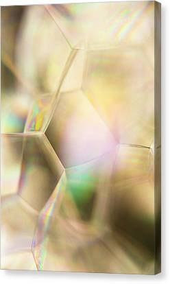 Bubble 054 Canvas Print by Thom Gourley