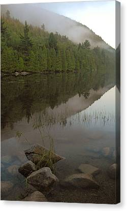Canvas Print featuring the photograph Bubble Pond Reflections by Stephen  Vecchiotti