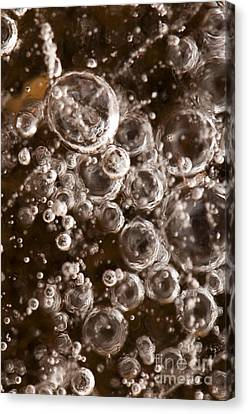 Sphere Canvas Print - Bubbles by Anne Gilbert