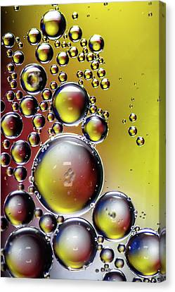 Canvas Print featuring the photograph Bubbles by Randy Scherkenbach