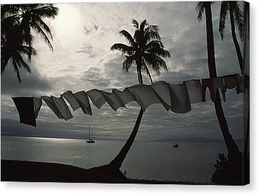 Buca Bay, Laundry And Palm Trees Canvas Print by James L. Stanfield