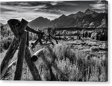 Buck And Rail To The Tetons Canvas Print by Mark Kiver