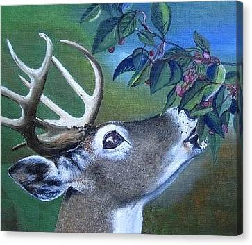 Buck Canvas Print