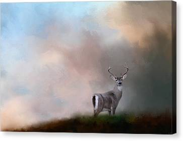 Buck On The Hill Canvas Print