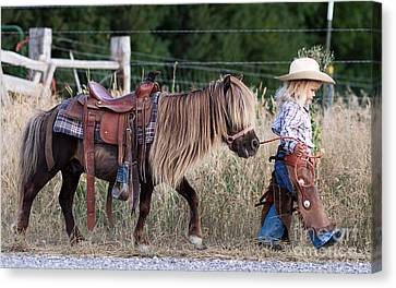 Pony Canvas Print - Buckaroo Cowgirl by Cindy Singleton