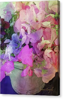 Canvas Print - Bucket Of Peas Digital Watercolor by James Temple