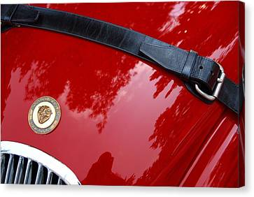 Canvas Print featuring the photograph Buckle Up by John Schneider