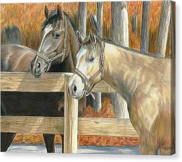 Buck's Pal Canvas Print