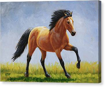 Buckskin Horse - Morning Run Canvas Print
