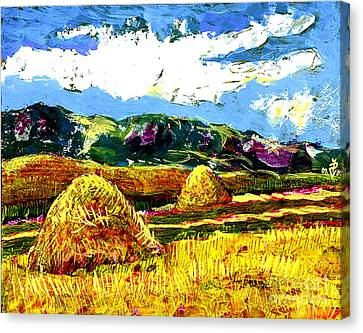 Bucovine Romania Canvas Print by Ion Danu