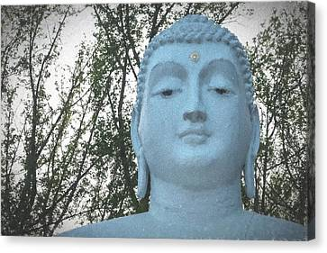 Buddha Nature Canvas Print by Terry DeLuco