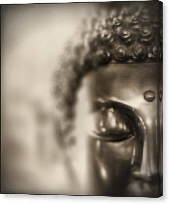 Canvas Print featuring the photograph Buddha Thoughts by Douglas MooreZart
