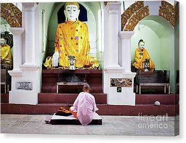 Canvas Print featuring the photograph Buddhist Nun At Shwedagon Pagoda by Dean Harte