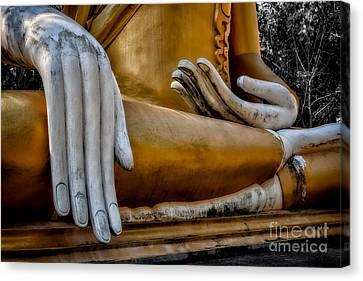 Buddhist Statue Canvas Print by Adrian Evans