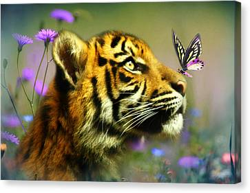 Buddy And The Butterfly Canvas Print by Trudi Simmonds