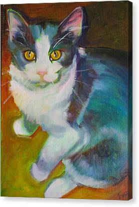 Buddy The Cat Canvas Print by Kaytee Esser