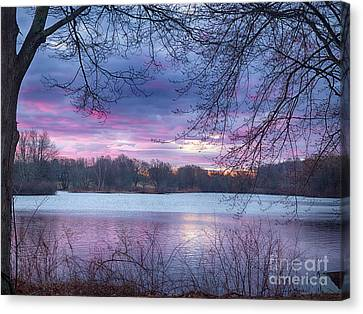 Buds And Sunrise Canvas Print