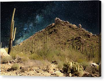 Buenas Noches, Saguaro Canvas Print by Gilbert Gilbert