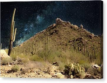 Buenas Noches, Saguaro Canvas Print by Gilbert Gilbert