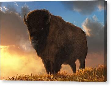 Brown Tones Canvas Print - Buffalo At Dawn by Daniel Eskridge