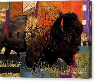 Buffalo Collection Canvas Print by Marvin Blaine