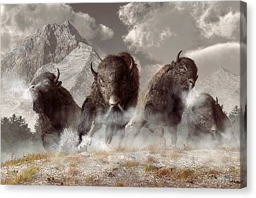 Buffalo Canvas Print by Daniel Eskridge