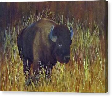 Canvas Print featuring the painting Buffalo Grazing by Roseann Gilmore
