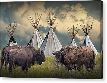 Buffalo Herd On The Reservation Canvas Print by Randall Nyhof
