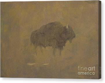 Buffalo In A Sandstorm Canvas Print by Albert Bierstadt