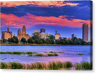Canvas Print featuring the photograph Buffalo In Pastels by Don Nieman