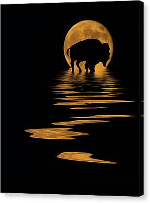 Buffalo In The Moonlight Canvas Print by Shane Bechler