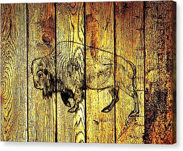 Canvas Print featuring the photograph Buffalo On Barn Wood by Larry Campbell