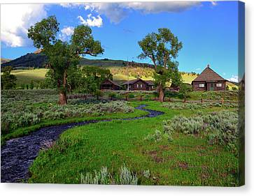 Buffalo Ranch Canvas Print by Greg Norrell
