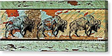 Canvas Print featuring the photograph Buffalo Trail 2 by Larry Campbell