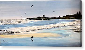 Bull Beach Canvas Print