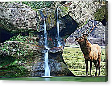 Bull Elk By A Waterfall Canvas Print