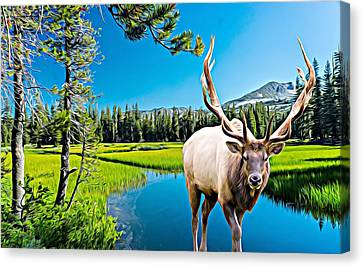 Bull Elk By The Lake Canvas Print