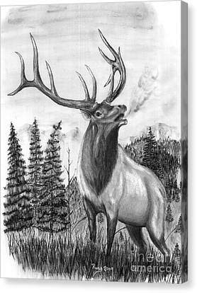 Bull Elk Issuing Challenge Canvas Print by Russ  Smith