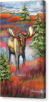 Bull Moose In Fall Canvas Print by Tracey Hunnewell