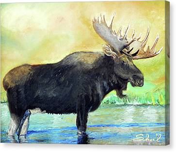 Canvas Print featuring the painting Bull Moose In Mid Stream by Sherril Porter