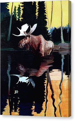 Bull Moose Canvas Print by Robert Wesley Amick