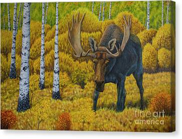 Bull Moose Canvas Print - Bull Moose by Veikko Suikkanen