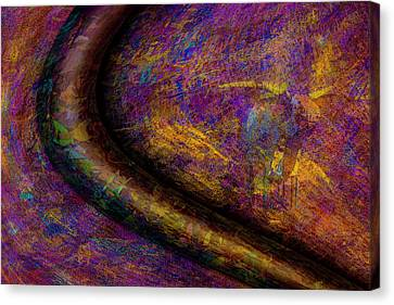 Canvas Print featuring the photograph Bull Rust by Paul Wear