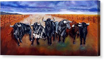 Bull Stampede Canvas Print