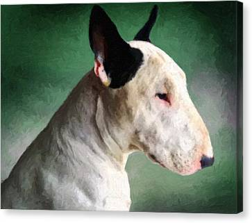 Bull Terrier On Green Canvas Print