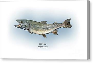 Bull Trout Canvas Print by Ralph Martens