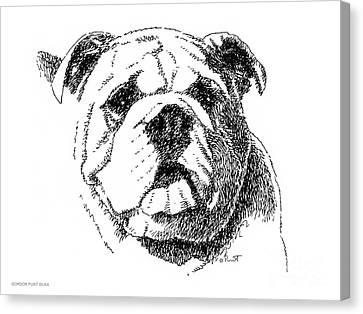 Bulldog-portrait-drawing Canvas Print by Gordon Punt