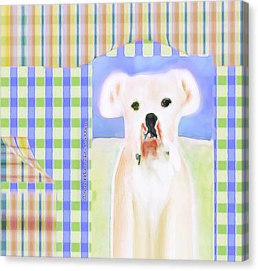 Buy Dog Art Canvas Print - Bulldog Rana Art 40 by Miss Pet Sitter