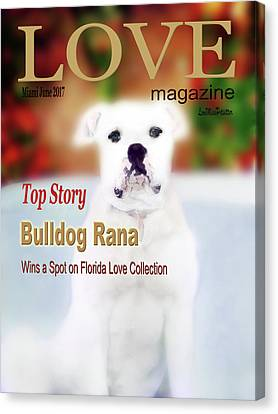 Buy Dog Art Canvas Print - Bulldog Rana Poster 8 by Miss Pet Sitter