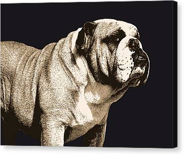 Bulldogs Canvas Print - Bulldog Spirit by Michael Tompsett